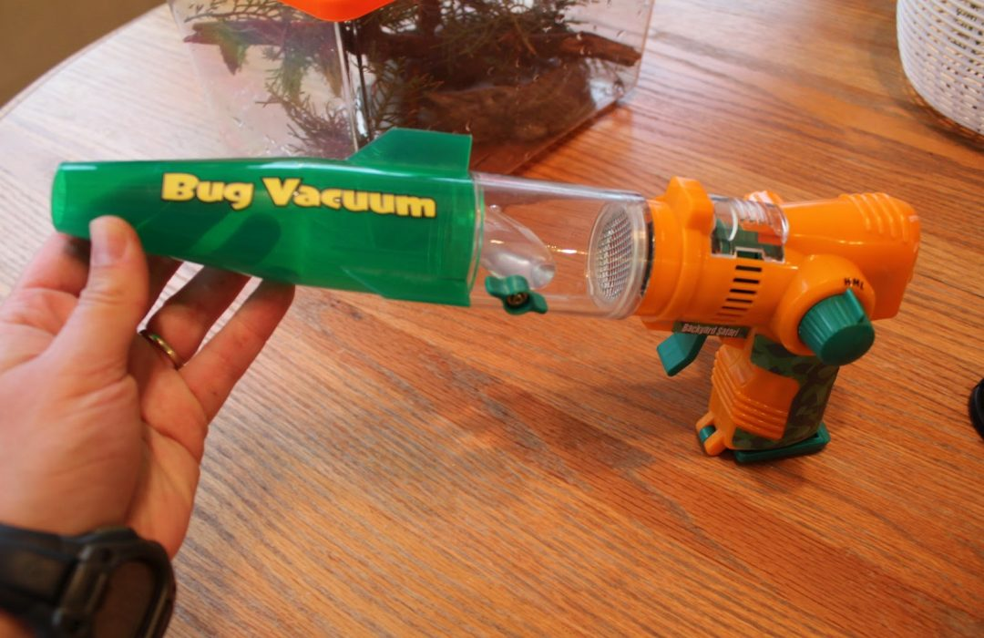 insect-bug-vacuum